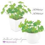 KISHIMA キシマ クローバー 消臭アーティフィシャルグリーン KH-60847 48 鉢タイプ CLOVER CT触媒加工 抗菌 防汚 消臭 造花 人工 観葉植物