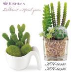 KISHIMA キシマ サキュレントリフレリウム 消臭アーティフィシャルグリーン KH-60985 86 鉢植え 寄せ植え サボテン コケ CT触媒加工 抗菌 防汚 消臭