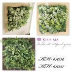 KISHIMA キシマ プレリエ 消臭アーティフィシャルグリーン L KH-61036 37 フレーム インテリアグリーン CT触媒加工 抗菌 防汚 消臭 造花 観葉植物