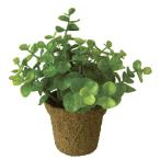 光触媒 インテリアグリーン ミニグリーン ユーカリ WMG-03 491384D 人工 観葉植物 造花 フェイクグリーン