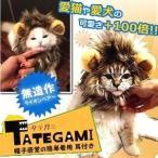クリスマス XMAS ペット用 タテガミ キャップ コスプレ 猫 小型犬 対応 オシャレ 簡単着脱 ライオン アニマル MI-TATEGAMI