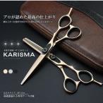本格 美容師 ハサミ 2本セット カリスマ 専用ケース付属 カット 梳きバサミ スキ ステンレス 髪 ロング シ