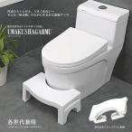 折畳み式 うまくしゃがーむ3 トイレ 洋式 和式 しゃがむ 座る 体勢 踏み 台 便所 お手洗い マンション しゃがみ込む ET-ORISHAGA
