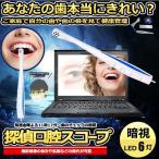 探偵口腔スコープ USB 顕微鏡 デジタル 歯 マイクロスコープ 口 チェック 確認 LED内蔵 CD付 状態 虫歯 子供 治療 成長 確認 PC パソコン TANSCOOP