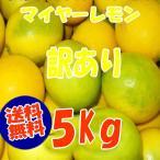 熊本産,訳ありマイヤーレモン,5Kg  (国産,九州、熊本より)