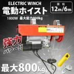 電動ウインチ(ホイスト) 最大能力800Kg 1800w