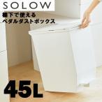 SOLOW(ソロウ) ペダルオープンツイン45L risu リス