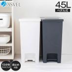ゴミ箱 キッチン エバン ペダル スリム 45リットル SD アスベル ASVEL EBAN 分別 おしゃれ 45l 45L 大容量 蓋付き 資源ゴミ ごみ箱