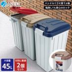 ゴミ箱 屋外 分別 ハンドルペール 45リットル 2個セット アスベル ASVEL おしゃれ 大型 大容量 45l 45L 蓋付き カラス対策 ベランダ 資源ゴミ ごみ箱