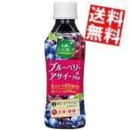 『送料無料』 伊藤園 太陽のスーパーフルーツ ブルーベリー&アサイーミックス 265gペットボトル 24本入