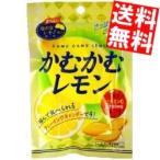 送料無料 三菱食品 かむかむレモン 10入