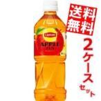 ショッピング紅茶 『送料無料』サントリー リプトン アップルティー 500mlペットボトル 48本 (24本×2ケース) (紅茶)