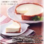 生チーズケーキ(税込・送料別)【冷凍・冷蔵発送】