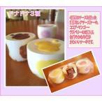 ドナドナ3種セット(ココア・マンゴー・ラズベリー)(税込・送料別)【冷凍・冷蔵発送】