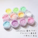 メール便送料無料 LumickColor 蓄光顔料パウダー ブライトトーン基本色11色セット 各2g