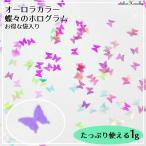 Yahoo!あとりえほのかオーロラカラー蝶々のホログラム お得な袋入り 1g