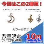 チャームパーツ メタルチャーム ついで買い専用 数量限定 10円チャーム