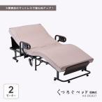 くつろぐベッド 収納式 AX-BE837 (折りたたみベッド・電動ベッド・日本製)