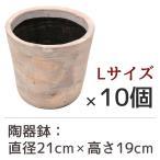 陶器鉢 フォレストポット 泡雪 あわゆき Lサイズ (直径21cm × 高さ19cm) 10個セット 陶器植木鉢
