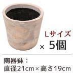 陶器鉢 フォレストポット 泡雪 あわゆき Lサイズ (直径21cm × 高さ19cm) 5個セット 陶器植木鉢