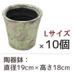 陶器鉢 フォレストポット 木漏れ日 こもれび Lサイズ (直径19cm × 高さ18cm) 10個セット 陶器植木鉢