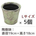 陶器鉢 フォレストポット 木漏れ日 こもれび Lサイズ (直径19cm × 高さ18cm) 5個セット 陶器植木鉢