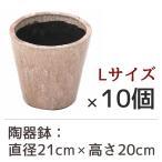 陶器鉢 フォレストポット 朝焼 あさやけ Lサイズ (直径21cm × 高さ20cm) 10個セット 陶器植木鉢