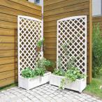 天然木製 ラティス付きプランター ウォッシュホワイト 2個セット 高さ150cm × 幅71.5cm