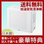 ツインバードパーソナル加湿空気清浄機AC-4252W