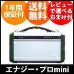 蓄電池 家庭用 [ポータブル蓄電池 エナジー・プロmini LB-200] 携帯バッテリー 大容量/同梱不可・代引き不可