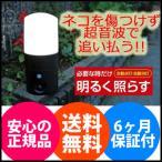 【在庫有】猫除け対策 超音波式 [アニマルバリア ブラック ミニ LEDセンサーライト付 IJ-ANB-05-LED 1038980]