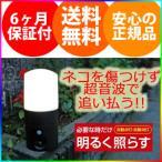 【在庫有】猫除け超音波 猫退治 [アニマルバリア ブラック ミニ LEDセンサーライト付 IJ-ANB-05-LED 1038980]