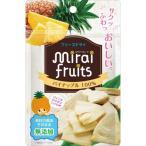 【送料無料】ビタットジャパン ミライフルーツ パイナップル 10g 1個