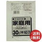 日本サニパック 尼崎市指定袋 30L 10枚入 G-3K 1個 【メール便送料無料】