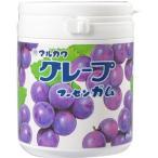 【6個セット】丸川製菓 グレープマーブルガムボトル 130g×6点セット  (お菓子・食品・ガム)