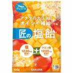 【送料無料・まとめ買い×20個セット】サラヤ 匠の塩飴 マンゴー味 100g 1個