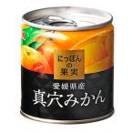 K&K にっぽんの果実 真穴みかん×24個セット (4901592905109)