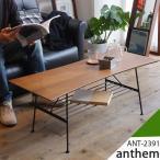 ローテーブル センターテーブル リビングテーブル カフェ 棚付き 北欧 木製 ANT-2391 インテリア アンセム