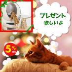 クリスマスに ネコ用 トイレ 基準ネコ砂をセット キャットロボット オープンエアー  自動 猫トイレ システムトイレ