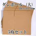 ダンボール箱 大 5枚セット 梱包 収納