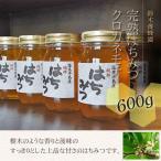 100%国産・愛知県渥美半島で採れた完熟はちみつ(クロガネモチ 600g)