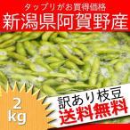 ショッピング新潟 えだ豆 送料無料 訳あり 2kg 新潟県阿賀野産 産地直送