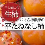 干し柿用渋柿 生柿【送料無料】新潟産訳あり[約18?20玉]