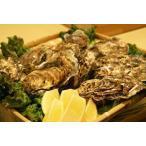 北海道仙鳳趾産・生牡蠣(カキ)特大3Lサイズ10個(殻付き 生食)/1個180〜230g