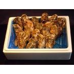 北海道・生牡蠣(かき)(殻付き 生食)牡蠣・厚岸西岸 仙鳳趾Mサイズ30個/70〜100g前後