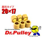 Dr.Pulley ドクタープーリー 変形型 20×17 マロッシサイズ 6個入り