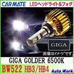 カーメイト  LEDヘッド&フォグバルブ BW522 HB3/HB4 共通 GIGA ゴールダー 6500k 車検対応 3年保証