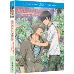 SUPER LOVERS 第2期 BD+DVD 全10話+OVA 275分収録 北米版