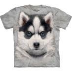 S-Lサイズ The Mountain Siberian Husky Puppy (メンズ イヌ ハスキー メーカー直輸入品 Tシャツ)
