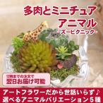 プチギフト 卵のガラスアートフラワーの多肉植物とミニチュアアニマル プレゼント 贈り物 インテリア雑貨 誕生日 プチギフト ホワイトデー お返し